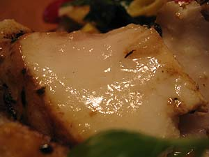 halibut2