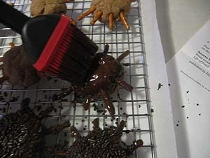 Chocolate Spider Cookies for Halloween