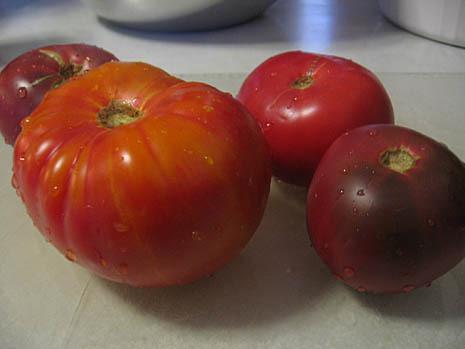 bread & tomato salad